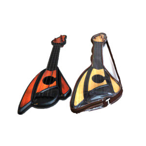 Гитара в чехле